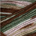 0268478 Deborah Norville Everyday Prints Yarn 02 Mint Chocolate Chip