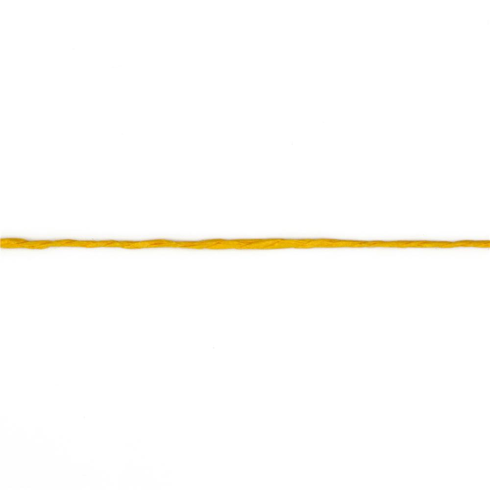 1/16&#39;&#39; Paper Twine Yellow