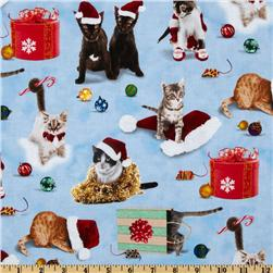 Christmas Cats Blue