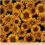 231974 Sunny Day Sunflowers Black