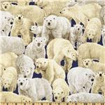 235251 Living Wonders Polar Bears Navy