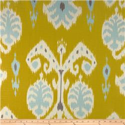 Home Accents Caftan Ikat Citron