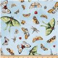 Woodsy Wonders Butterflies & Bugs Blue