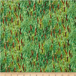 Landscape Cattails Green