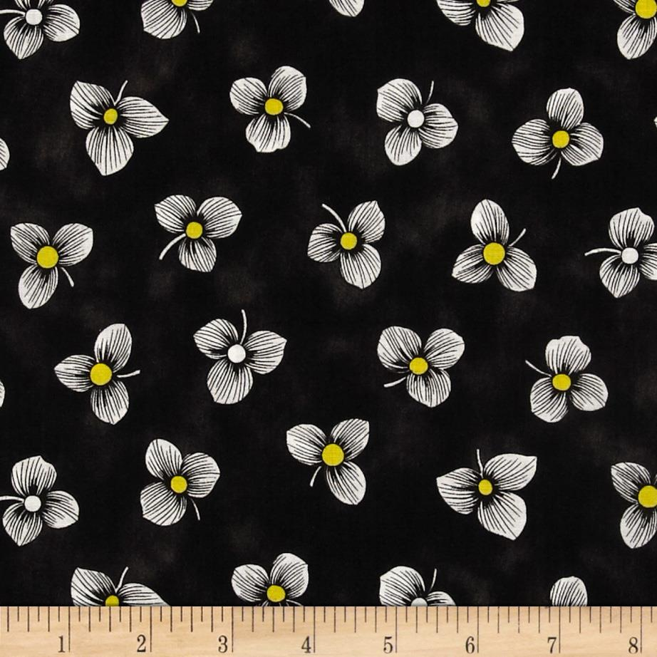 Sunburst Contempo Tossed Floral Black