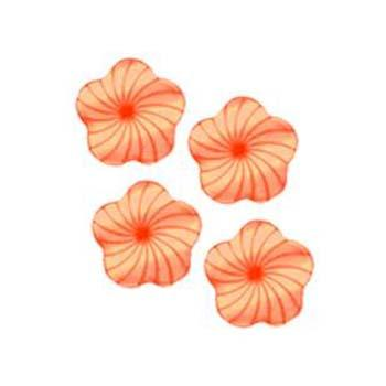 Fashion Button 1/2'' Paris Coral