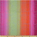 Kaffe Fassett Collective 2010 Hot Ombre Stripe Multi