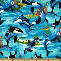 Timeless Treasures Killer Whales Blue