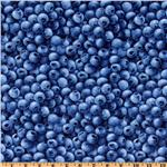 DR-820 Farmer John&#39;s Marketplace Blueberries Blue