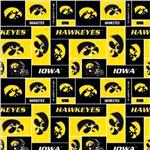 BN-685 Collegiate Fleece University of Iowa Blocks