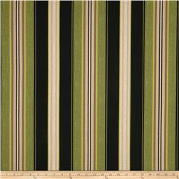 Tempo Indoor/Outdoor Stripe Black/Green