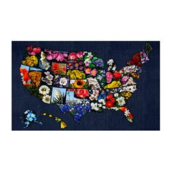 "American Byways Digital Print 27.5"" State Flower Panel Blooms"