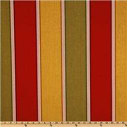 Richloom Indoor/Outdoor Napa Stripe Salsa Home Decor Fabric