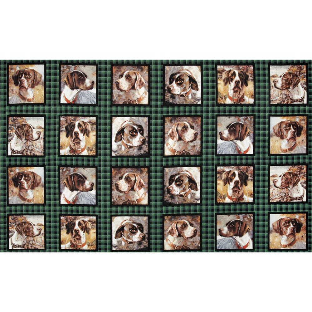 Wild Wings Point North German Shorthair Block
