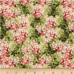 From Paris with Love Hydrangeas Allover Green/Pink