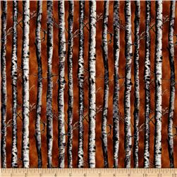 Northwoods Birch Brown