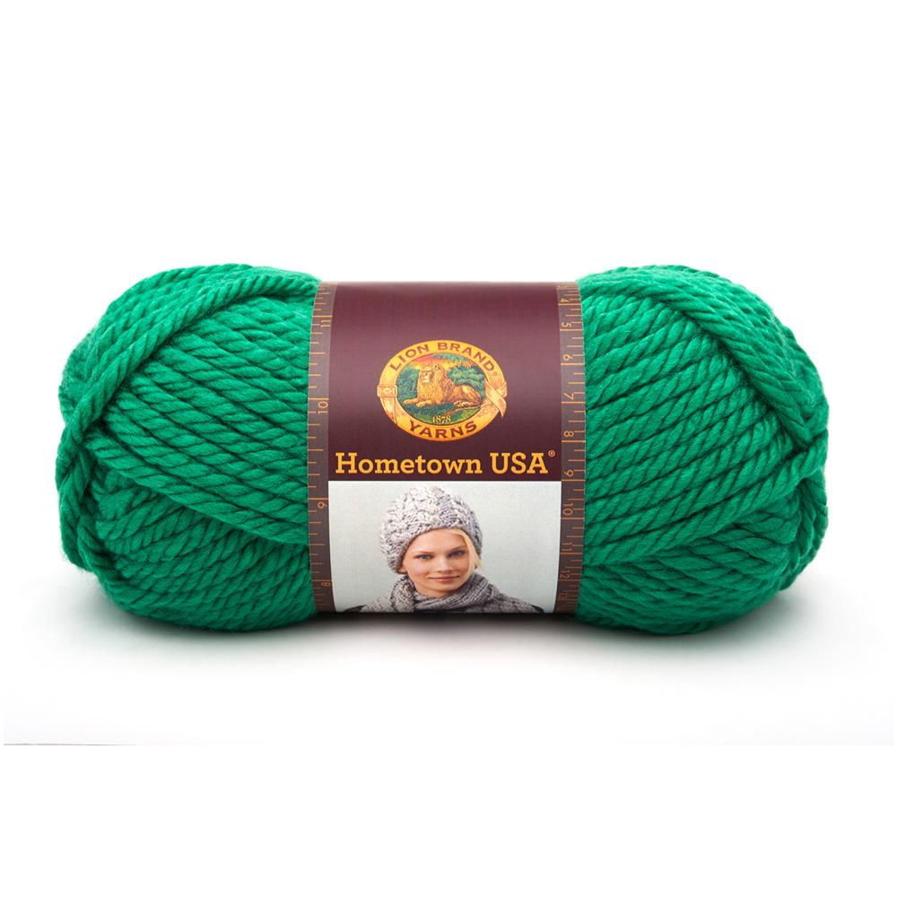 Lion Brand Hometown USA Yarn (130) Green Bay