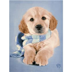Puppy Fleece Panel Blue