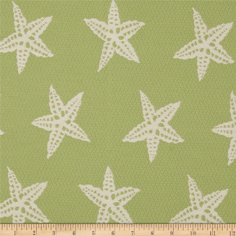 Covington Indoor/Outdoor Starfish Tropique