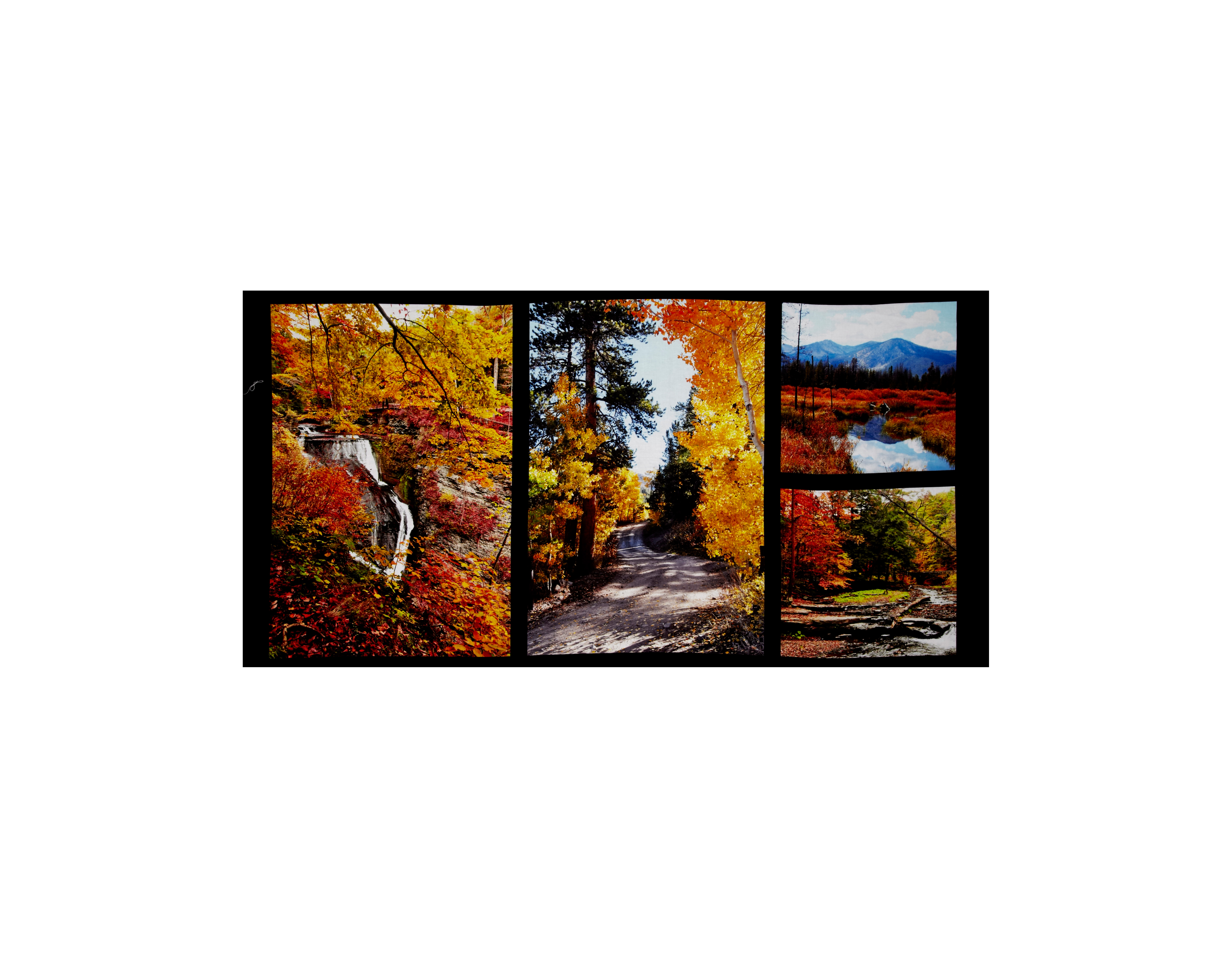 Fallscapes Digital Print 24 In. Panel Multi Fabric by Red Rooster in USA