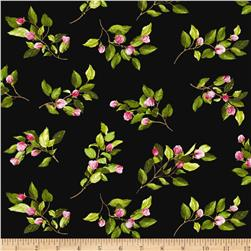 Kanvas Apple Blossom Festival Apple Buds Black