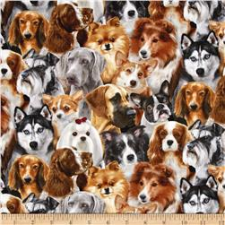 Dog Breeds Pack Dogs Black