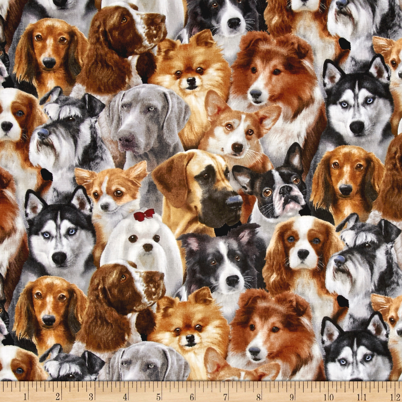 Dog Breeds Pack Dogs Black Fabric