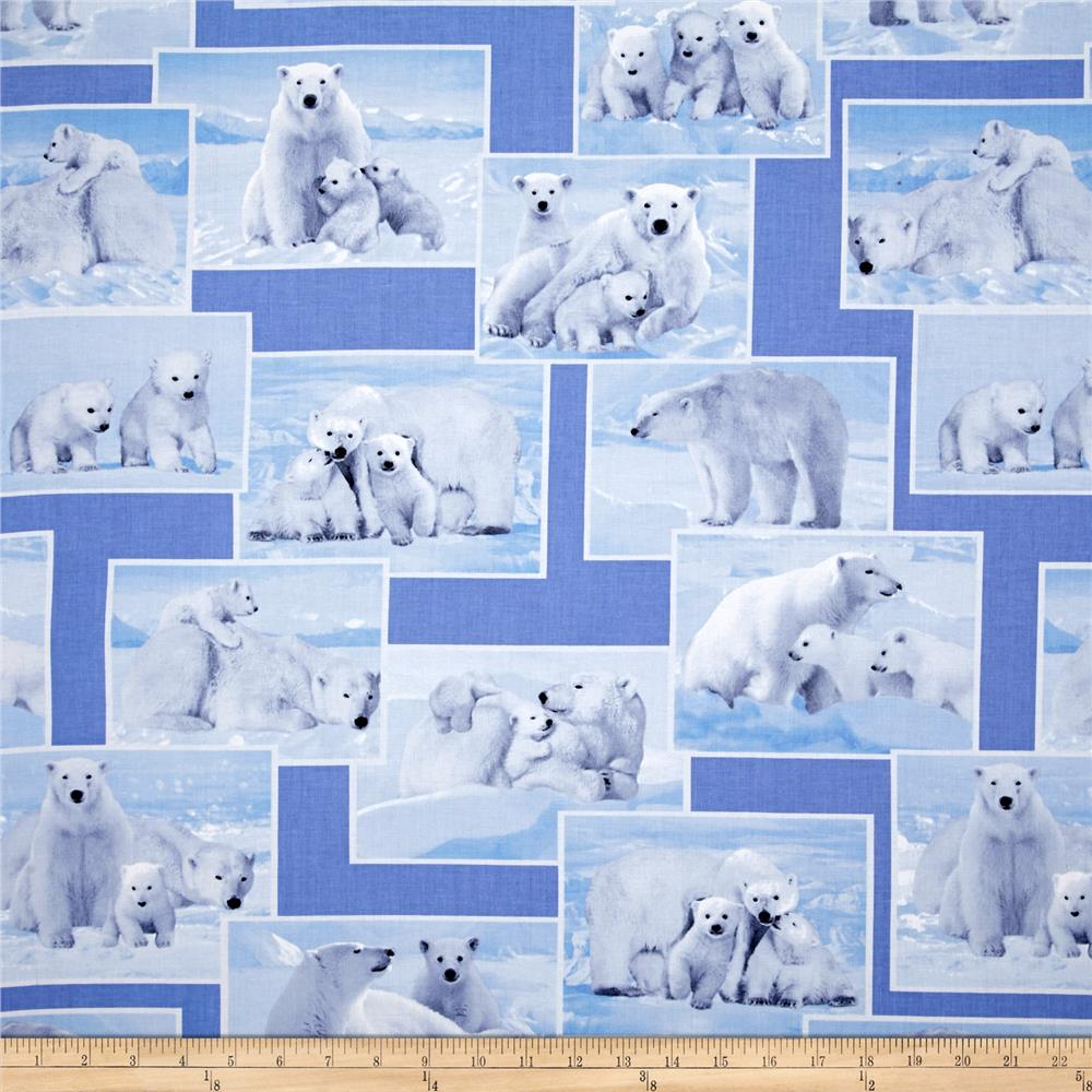 Kanvas On the Wild Side Polar Bears Blue