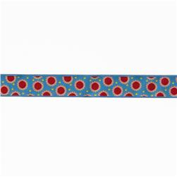 7/8'' Jane Sassaman Blue & Red Dotty Dots