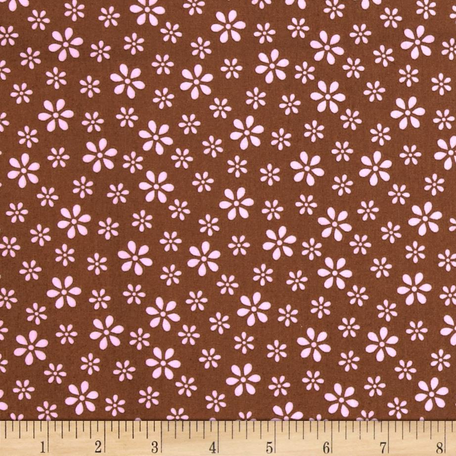 Teddy Bear Basics Tossed Daisy Brown/Pink