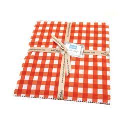 Riley Blake Basics Large Gingham 10'' Stackers