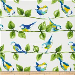 Tempo Indoor/Outdoor Curious Birds Blue