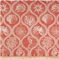 Covington Outdoor Solution Dyed Shoreham Coral Red