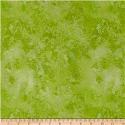 "108"" Wide Essential  Quilt Back Cosmos Lime"