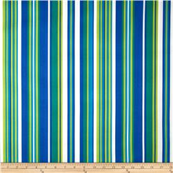 Bartow Indoor/Outdoor Lagoon Stripe Blue/Green