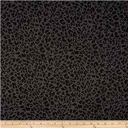 Jacquard Knit Cheetah Print Black/Grey
