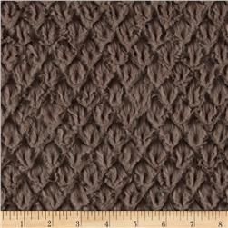 Minky Soft Tile Cuddle Oyster Fabric