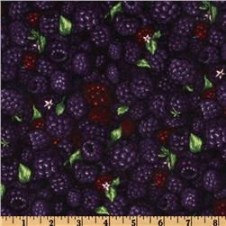 Farmer John's Marketplace II Blackberry Purple