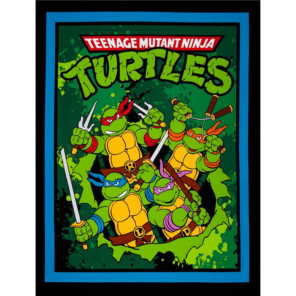Nickelodeon Teenage Mutant Ninja Turtles Retro TMNT Retro