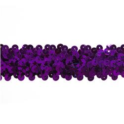 Team Spirit #66 Sequin Trim Purple
