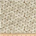 Fun In The Sun Sand Dollars Ivory