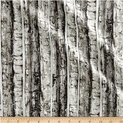 Nocturne Metallic Birch Trees Birch/Silver