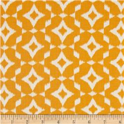 Mint To Be Ikat Orange