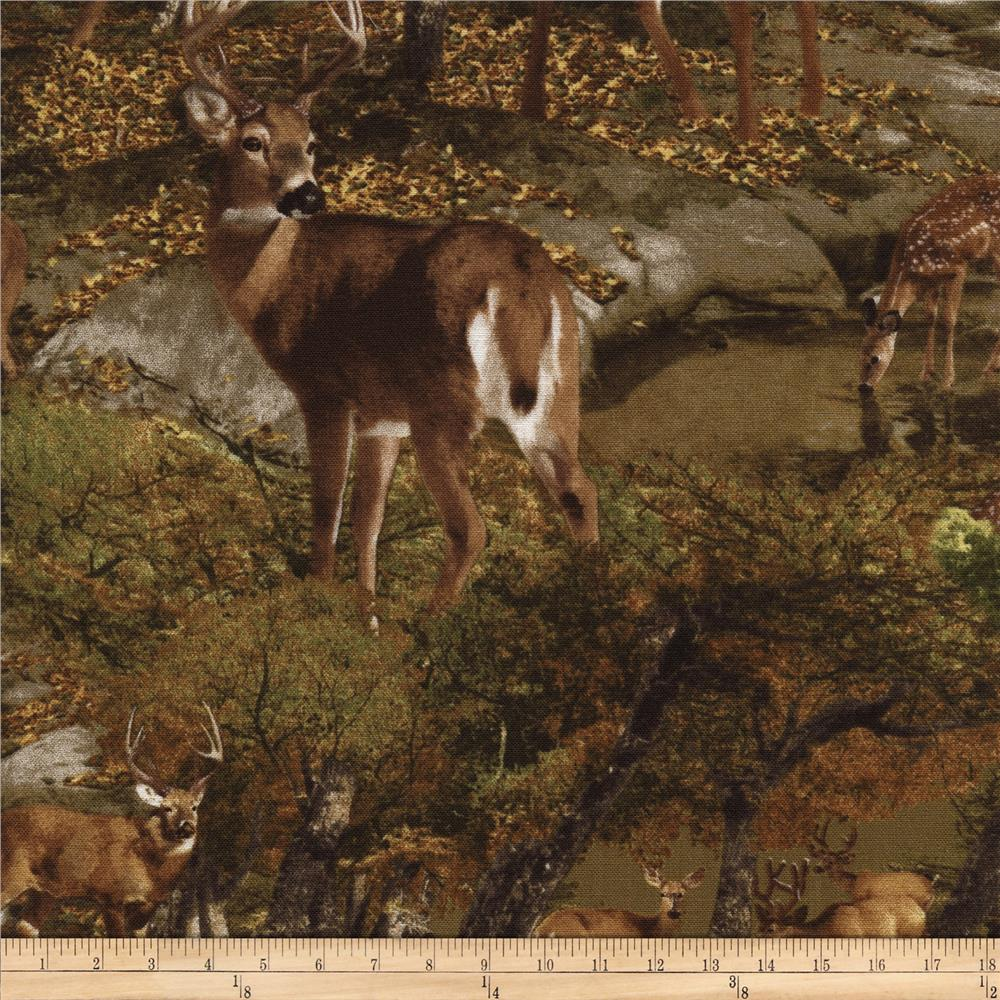 Timless Treasures Into the Wild Deer