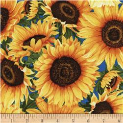 Timeless Treasures Wild Gold Sunflower