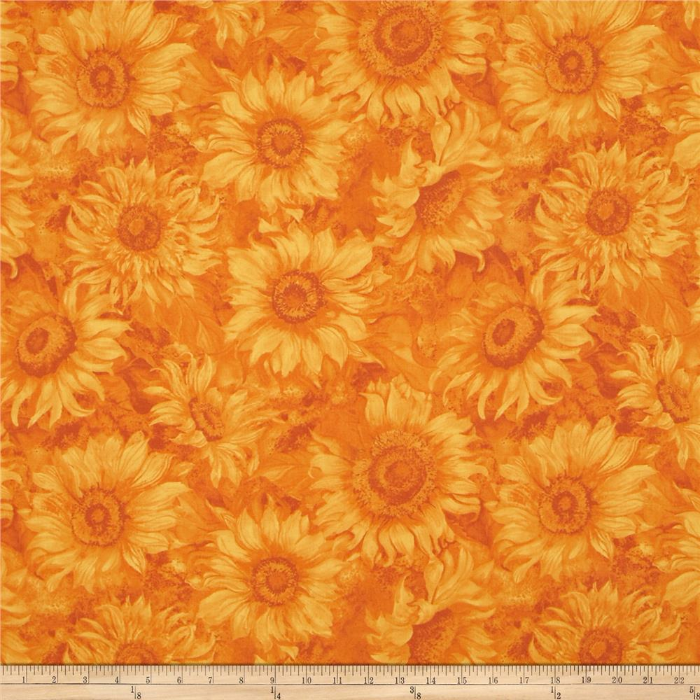 Slice of Sunshine Sunflower Texture Orange