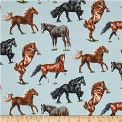 Horse Breeds Horses Allover Blue