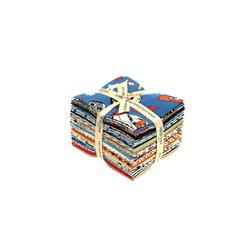 Riley Blake Rocket Age Fat Quarter Multi