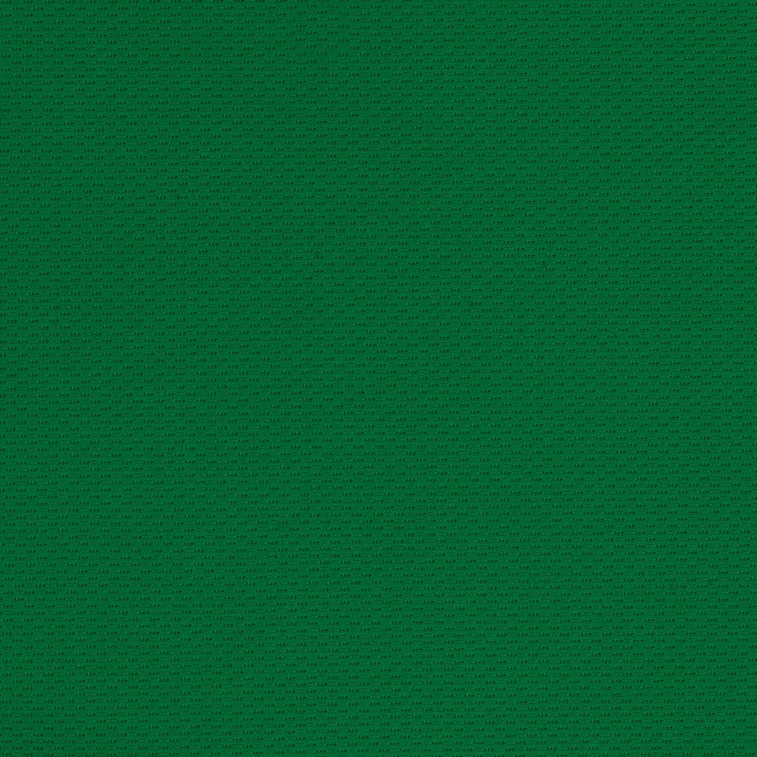 Athletic Mesh Knit Kelly Green Fabric 0454521