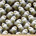 Majestic Bald Eagles Patches Gray